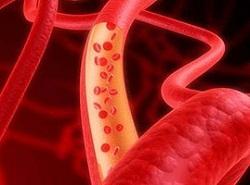 栄養を細胞に運ぶ血液
