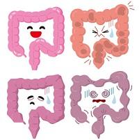 大腸の健康状態
